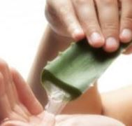 the benefits of using the juice or gel frshly squezzed out of an Alove Vera Leaf